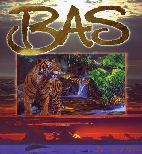 The Art of BAS Brochure
