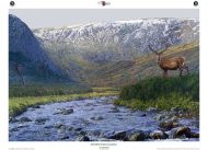 Monarch of Glen Alladale