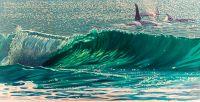 Ocean Moment