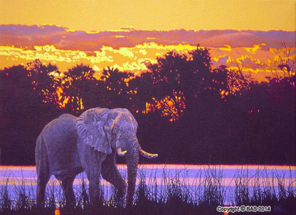 wildlife art,wildlife art paintings,oil painting,art prints,bas,art of bas,Elephant Painting,Okovango Delta Botswana,Fine Art Limited Edition,linen,limited edition
