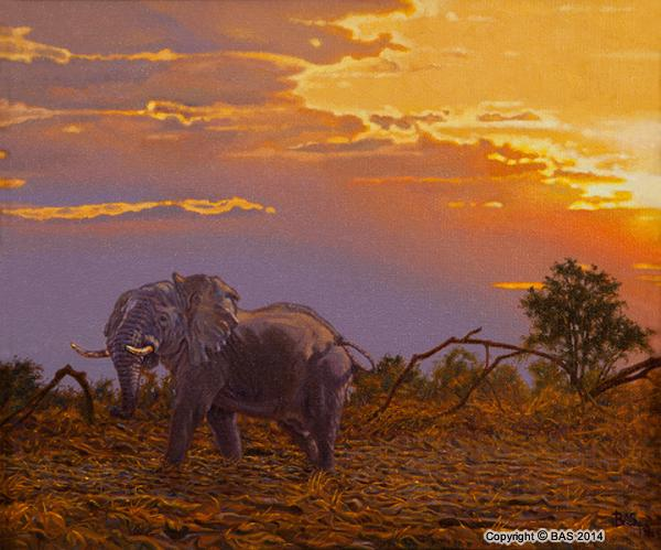 elephant painting,oil painting,wildlife painting,wildlife art,art of bas,BAS