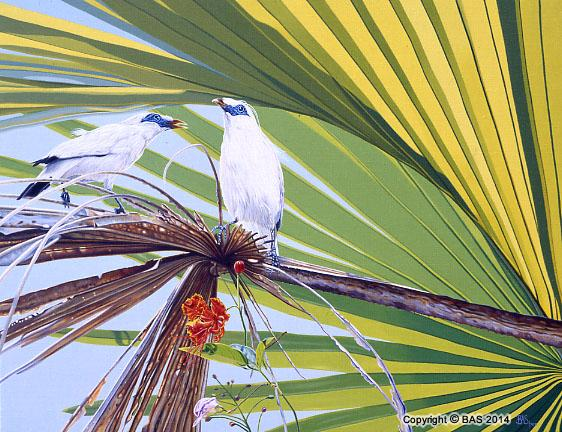 jalak bali starling painting,jalak bali starling oil painting,art of bas,BAS,bali,bird painting,wildlife art paintings