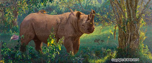 black rhino painting,black rhino art print,black rhino giclee,wildlife art print,limited edition,bas,bas art,wildlife painting
