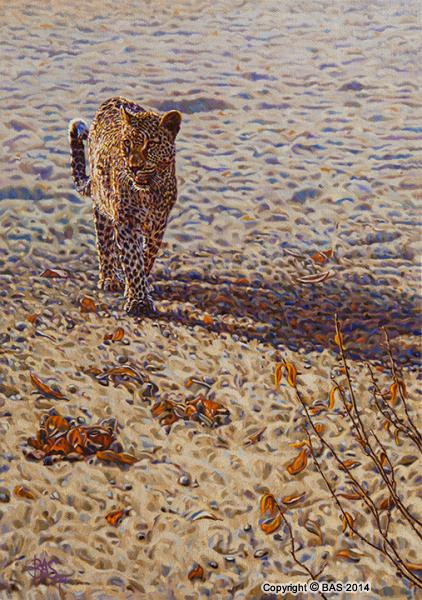 wildlife art,wildlife art paintings,oil painting,bas,art of bas,Leopard Painting,Africa Big Cat,canvas