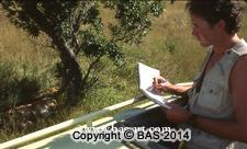 wildlife adventures,wildlife adventure,wildlife,bas,art of bas,africa,roosevelt,herds,karen blixen,
